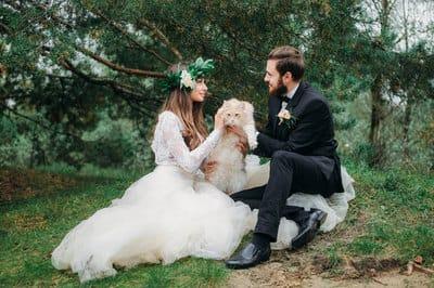 Хипстерская свадьба с котиками
