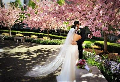 Організація весілля навесні